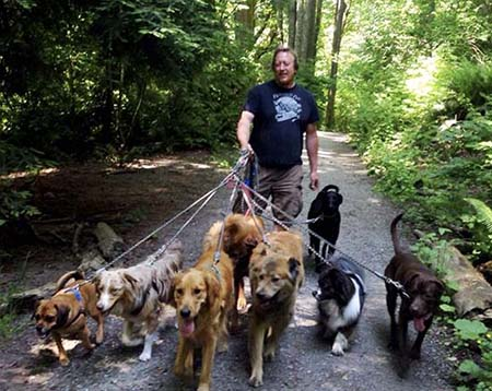 Kevin Pelletier walking a trail with a group of dogs.